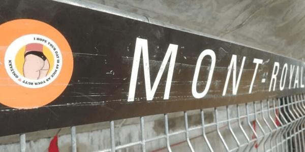 No Pants Subway Ride 2020